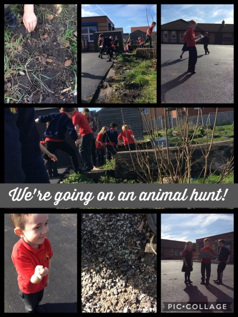 1U Animal hunt and Palm Sunday