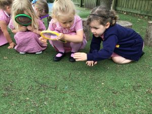 N Afternoon Nursery went on a minibeast hunt today. We found lots of mini beasts including a massive spider which made us all scream