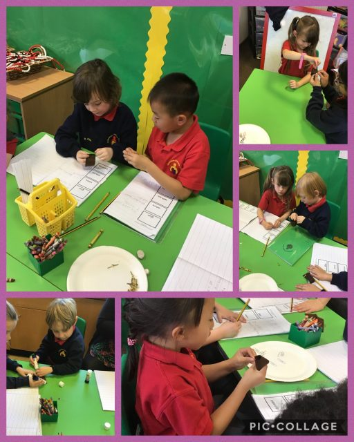 1.3 explored a range of resources to find out which would make the best fastener for a coat for our teddies. We recorded our results identifying which was the best.